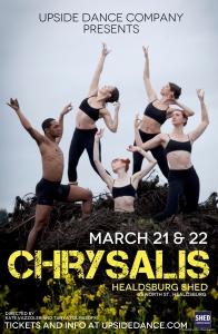 Chrysalis poster 2.jpeg